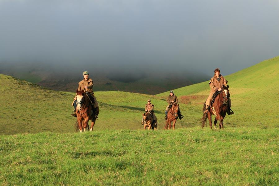Horseback Riding On The Big Island Hi